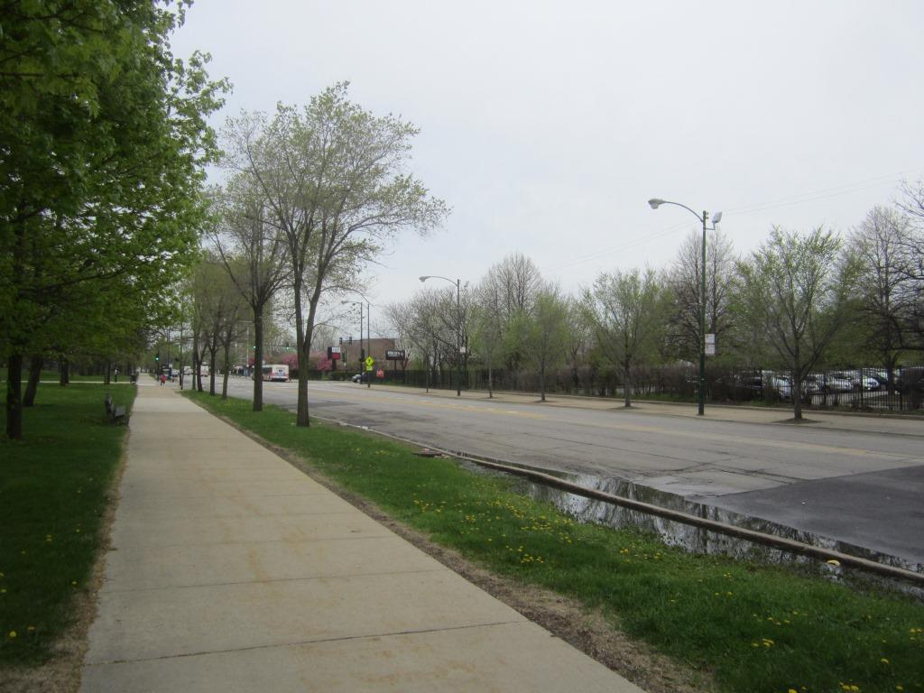 The strip of Jackson Park between Stony Island And Cornell is the future  site of the Obama Presidential Library.