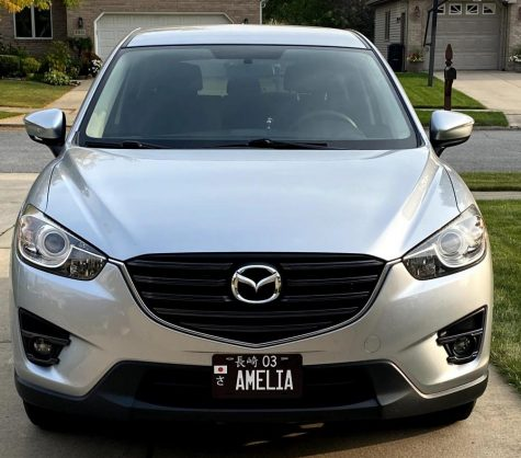 Amelia the Mazda-CX has worked out as an economical car. Indiana only requires a back plate which provided the opportunity to add the car